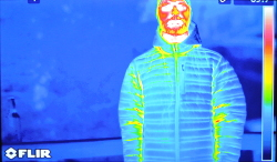 Down Jacket Thermal Image