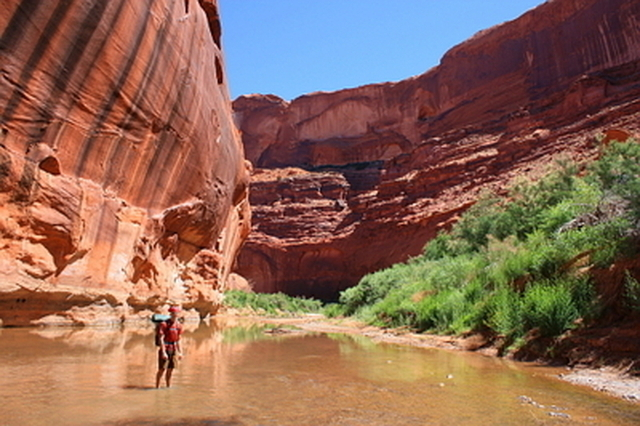 Backpacking in Coyote Gulch, Escalante Monument