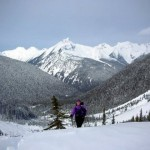 backcountry_skiing_2_lg.jpg