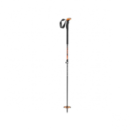 LEKI Aergonlite 2 Carbon Ski Pole