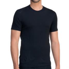 Icebreaker BodyFit 200 Oasis Crew – Short-Sleeve – Men's