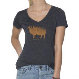 Icebreaker Tech Lite Ram V-Neck Shirt – Short-Sleeve – Women's