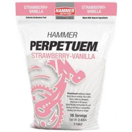 Hammer Nutrition Perpetuem Endurance Fuel