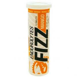 Hammer Nutrition Endurolytes Fizz – 12-Tubes