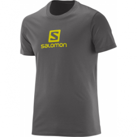 Salomon Cotton Tee – Men's