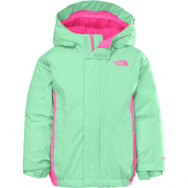 The North Face Delea Insulated Jacket – Toddler Girls'