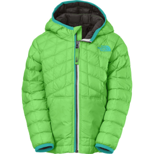 58a40b5723c5 The North Face Thermoball Insulated Hooded Jacket - Toddler Boys ...
