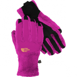 The North Face Denali Thermal Etip Glove – Women's