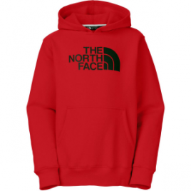 The North Face Logowear Pullover Hoodie – Boys'