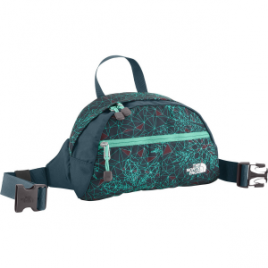 The North Face Roo II Lumbar Pack – 185cu in