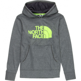 The North Face Logo Surgent Pullover Hoodie – Boys'