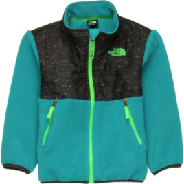 The North Face Denali Fleece Jacket – Toddler Boys'
