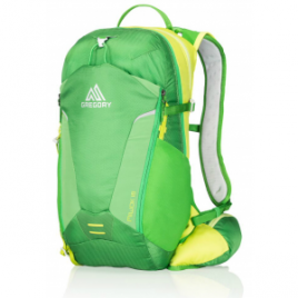 Gregory Miwok 18 L Backpack