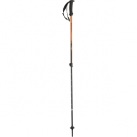 Black Diamond First Strike Trekking Pole – Kids'